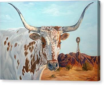 Bovine Canvas Print - Texas Longhorn by Jana Goode