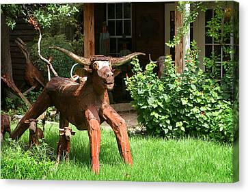Texas Longhorn Sculpture Canvas Print by Linda Phelps