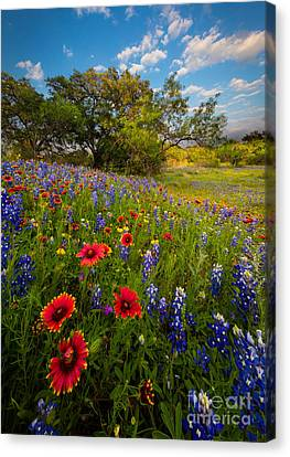 Texas Paradise Canvas Print