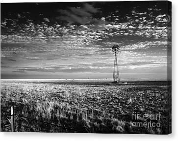 Texas Plains Windmill Canvas Print