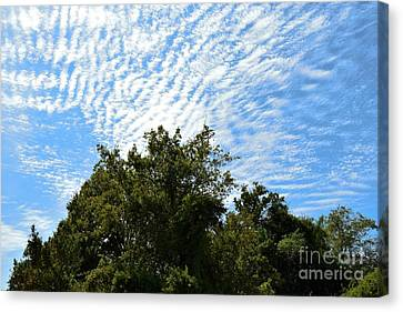Canvas Print featuring the photograph Texas Scene - Midday  by Ray Shrewsberry