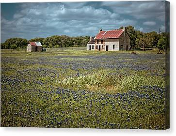 Old Country Roads Canvas Print - Texas Stone House by Linda Unger