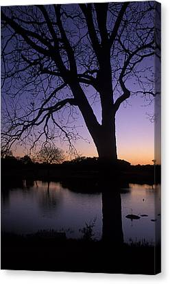 Texas Sunset On The Lake Canvas Print by Kathy Yates