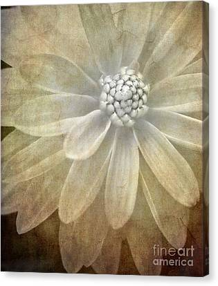 White Flower Canvas Print - Textured Dahlia by Meirion Matthias