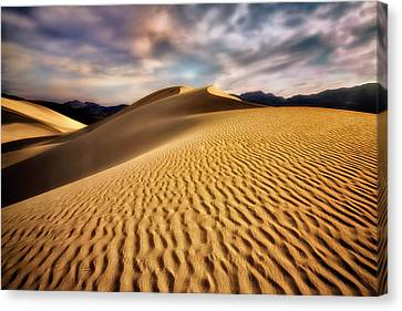 Textured Dunes  Canvas Print