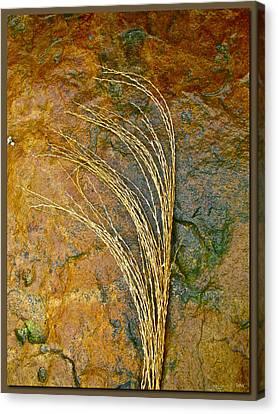 Textured Nature Canvas Print