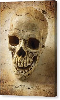 Human Head Canvas Print - Textured Skull by Garry Gay