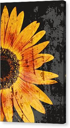 Textured Sunflower Canvas Print by Cathie Tyler