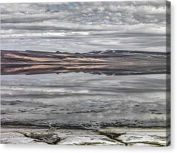 Mystical Landscape Canvas Print - Textures And Reflections by Leland D Howard