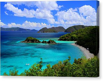Thank You St. John Usvi Canvas Print
