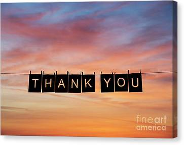 Thank You Canvas Print by Tim Gainey