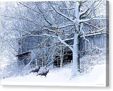 Thanksgiving Guests Canvas Print by Ron Jones