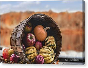 Thanksgiving Harvest Basket Canvas Print by Alissa Beth Photography