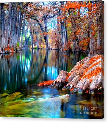 Cypress Canvas Print - That For Which I'm Thankful by Katya Horner