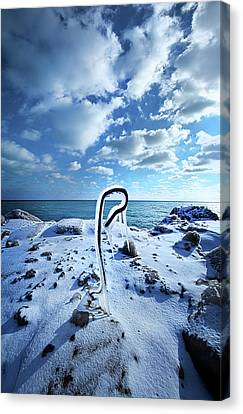 Canvas Print featuring the photograph That One Weird Thing by Phil Koch