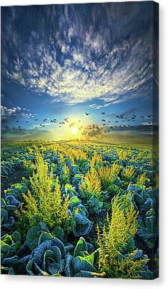That Voices Never Shared Canvas Print by Phil Koch