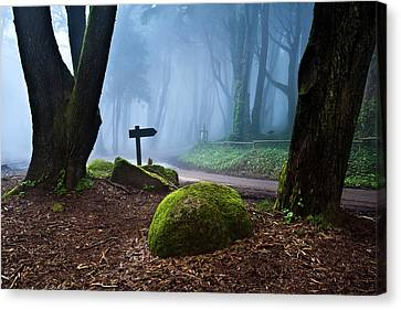 Canvas Print featuring the photograph That Way by Jorge Maia