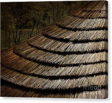 Thatch Roof  Canvas Print by Tom Gari Gallery-Three-Photography