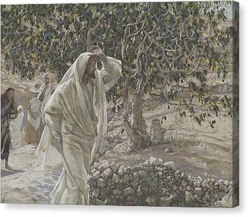 The Accursed Fig Tree Canvas Print by Tissot