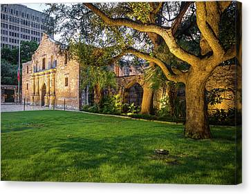 The Alamo Grounds - San Antonio Texas Canvas Print