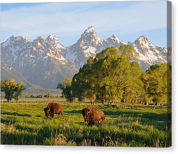Canvas Print featuring the photograph The American West by Aaron Spong