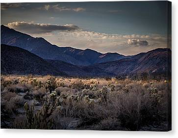 Canvas Print featuring the photograph The American West by Peter Tellone