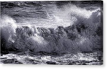 The Angry Wave Canvas Print by Olivier Le Queinec