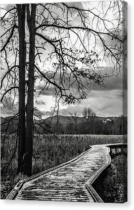 Canvas Print featuring the photograph The Appalachian Trail by Eduard Moldoveanu