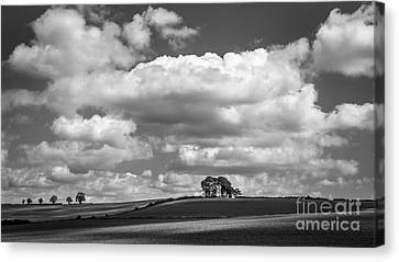 The Approach Canvas Print by Richard Thomas