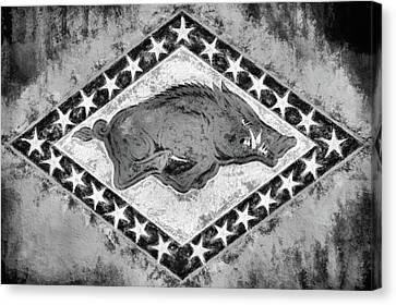 The Arkansas Razorbacks Black And White Canvas Print by JC Findley