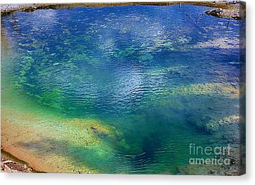 Canvas Print featuring the photograph The Artist Pallet by Robert Pearson