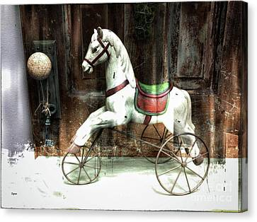 The Attic Stable  Canvas Print by Steven Digman