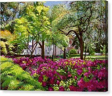 The Azaleas Of Savannah Canvas Print by David Lloyd Glover