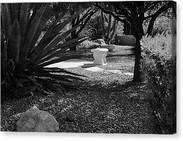 Canvas Print featuring the photograph The Backyard by Monte Stevens