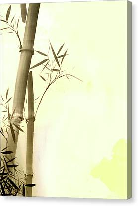The Bamboo Branch Canvas Print by Mark Rogan