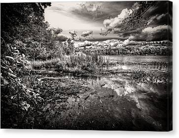 Canvas Print featuring the photograph The Basin And Snails by Bob Orsillo