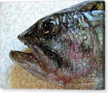 The Bass Canvas Print by Carol Grimes