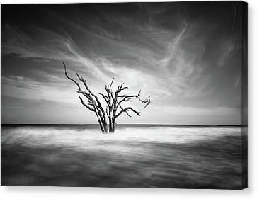 The Bay Canvas Print by Ivo Kerssemakers