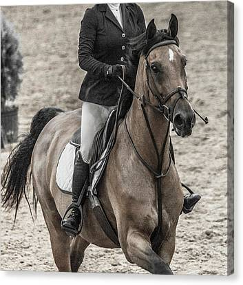 Braids Canvas Print - The Bay Show Jumping by Betsy Knapp