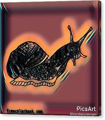 The Beach Snail Canvas Print by Brenda Knight