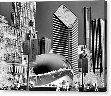 The Bean - 2 Canvas Print by Ely Arsha