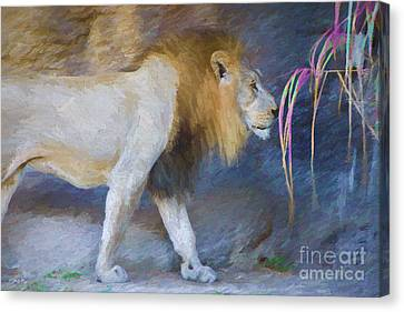 The Beast Canvas Print by Judy Kay