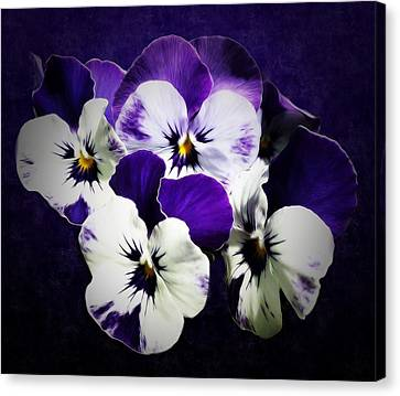 The Beauties Of Spring Canvas Print by Gabriella Weninger - David
