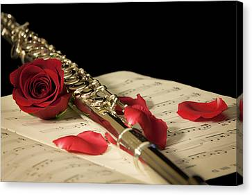 The Beauty Of Music Canvas Print