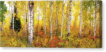 Canvas Print featuring the photograph The Beauty Of The Autumn Forest by Tim Reaves