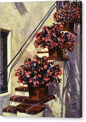 The Begonia Stairs Canvas Print by David Lloyd Glover