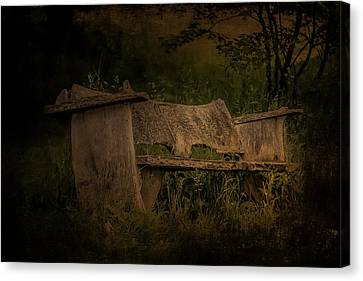 Canvas Print featuring the photograph The Bench by Ryan Photography