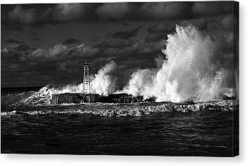 Canvas Print featuring the photograph The Big One by Nareeta Martin