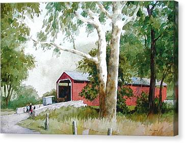 The Big Sycamores Canvas Print by Faye Ziegler