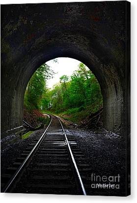 The Big Tunnel Canvas Print by Julie Dant